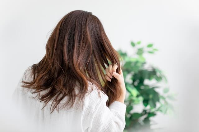 Digital Perm Asian Perm Benefit And Advantage T Gardens New York Hair Salon